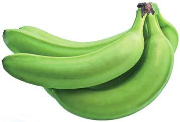 Plátanos López