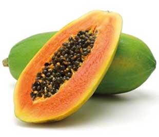 GPL - Nutrición - Papaya