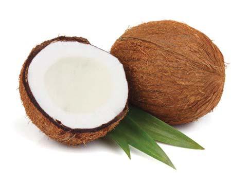 GPL - Productos Tropicales Coco