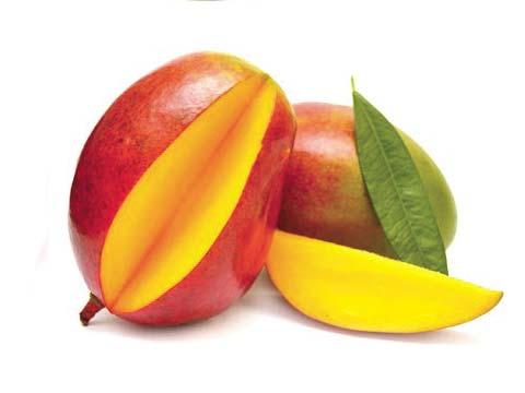 GPL - Productos Tropicales Mango