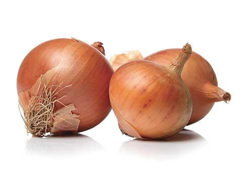 GPL - Productos Frutos Secos Cebollas