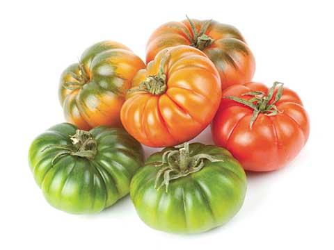 GPL - Productos Frutos Secos Tomate Raf