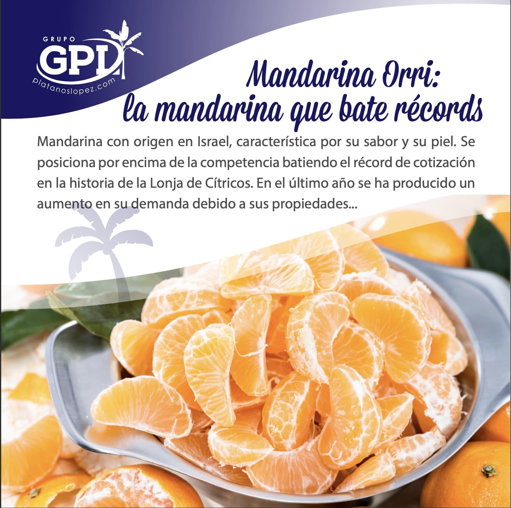 mandarina Orri, variedad que bate récords