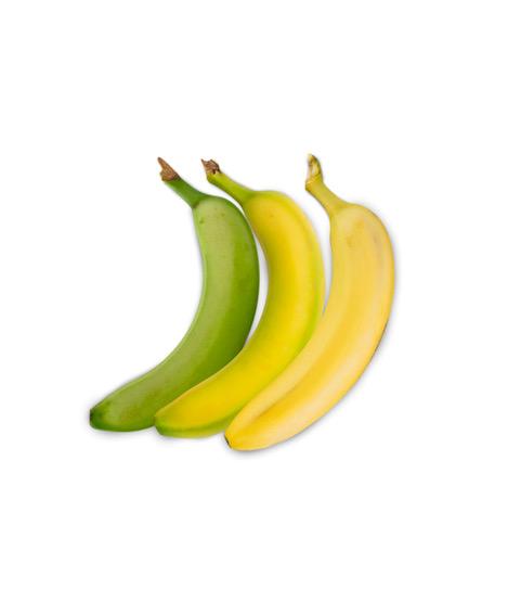 GPL - Somos maduradores Plátanos